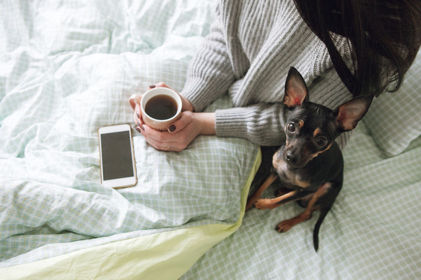 Dog Sitting on Bed Next to Woman and iPhone